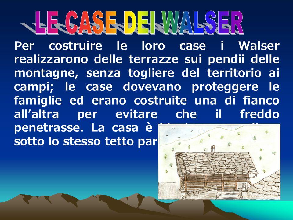 I Walser costituiscono una presenza inconfondibile e caparbia nel territorio alpino. Ancora oggi posseggono quellistinto di sopravvivenza che ha perme