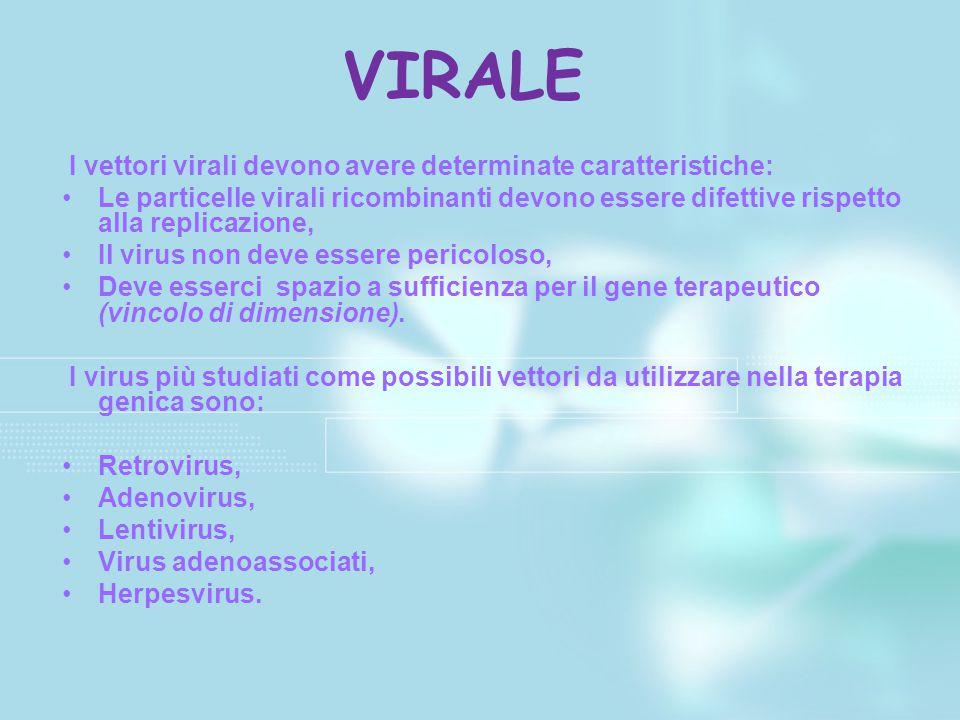 I vettori virali devono avere determinate caratteristiche: Le particelle virali ricombinanti devono essere difettive rispetto alla replicazione, Il vi