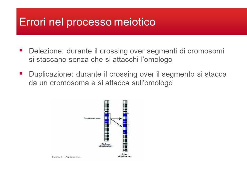 Delezione: durante il crossing over segmenti di cromosomi si staccano senza che si attacchi lomologo Duplicazione: durante il crossing over il segment