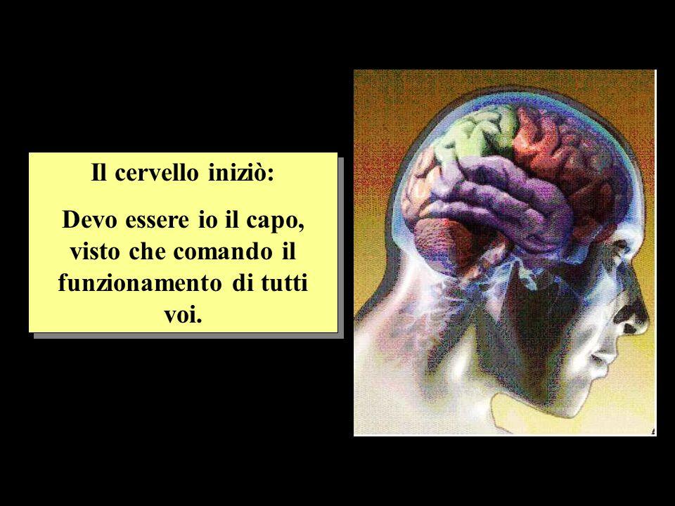 Il cervello iniziò: Devo essere io il capo, visto che comando il funzionamento di tutti voi. Il cervello iniziò: Devo essere io il capo, visto che com