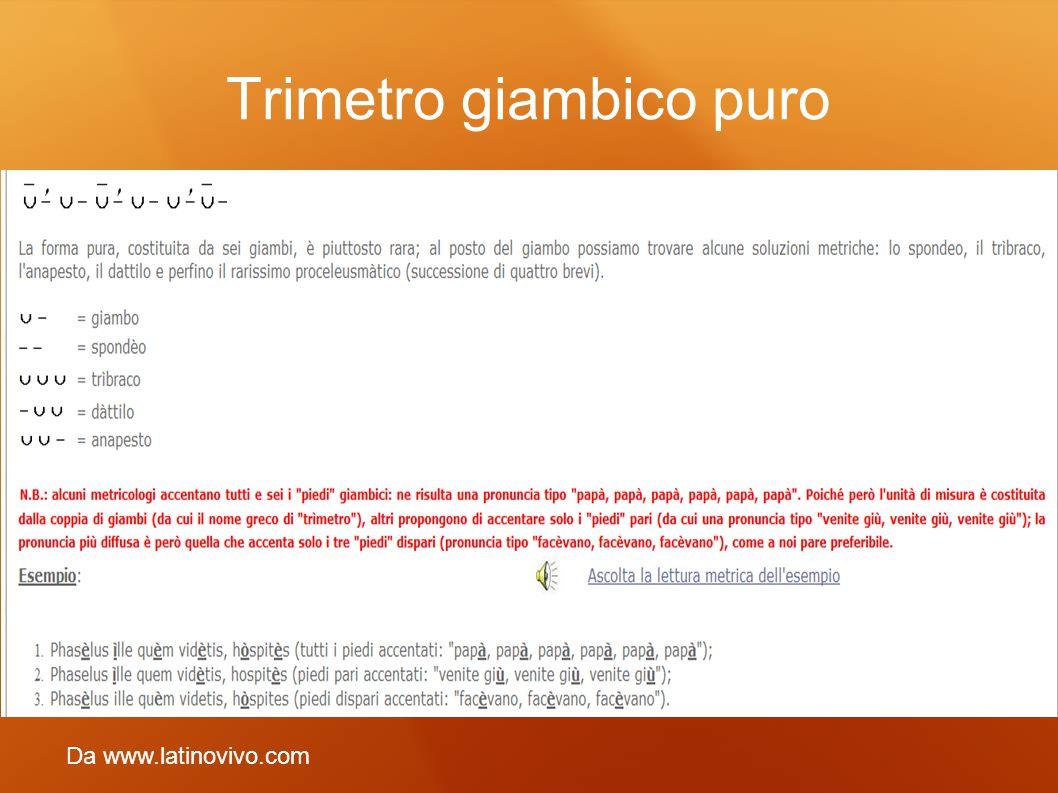 Trimetro giambico puro Da www.latinovivo.com