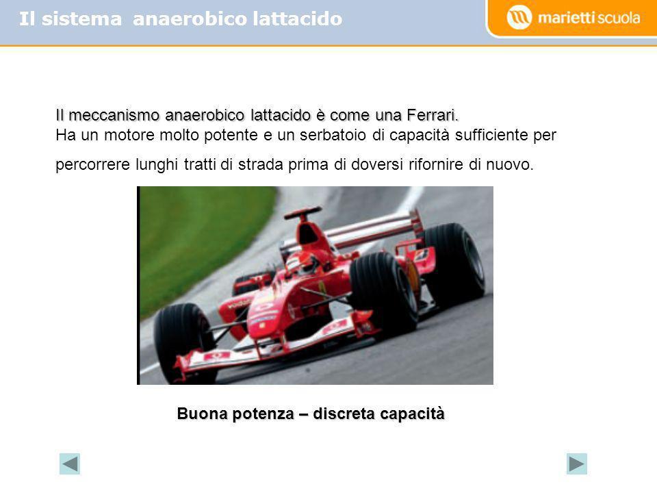 Il sistema anaerobico lattacido Il meccanismo anaerobico lattacido è come una Ferrari. Ha un motore molto potente e un serbatoio di capacità sufficien