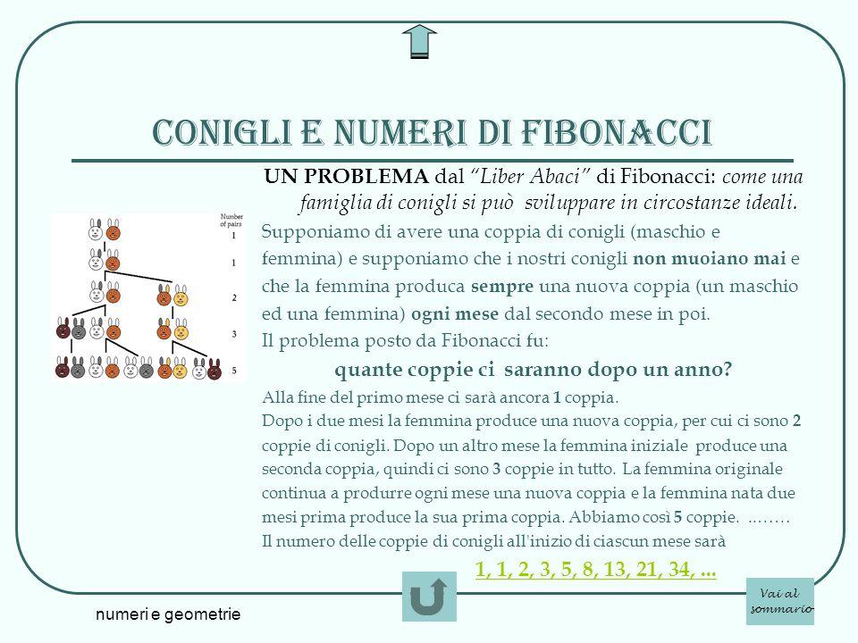 numeri e geometrie Conigli e numeri di Fibonacci UN PROBLEMA dal Liber Abaci di Fibonacci: come una famiglia di conigli si può sviluppare in circostan