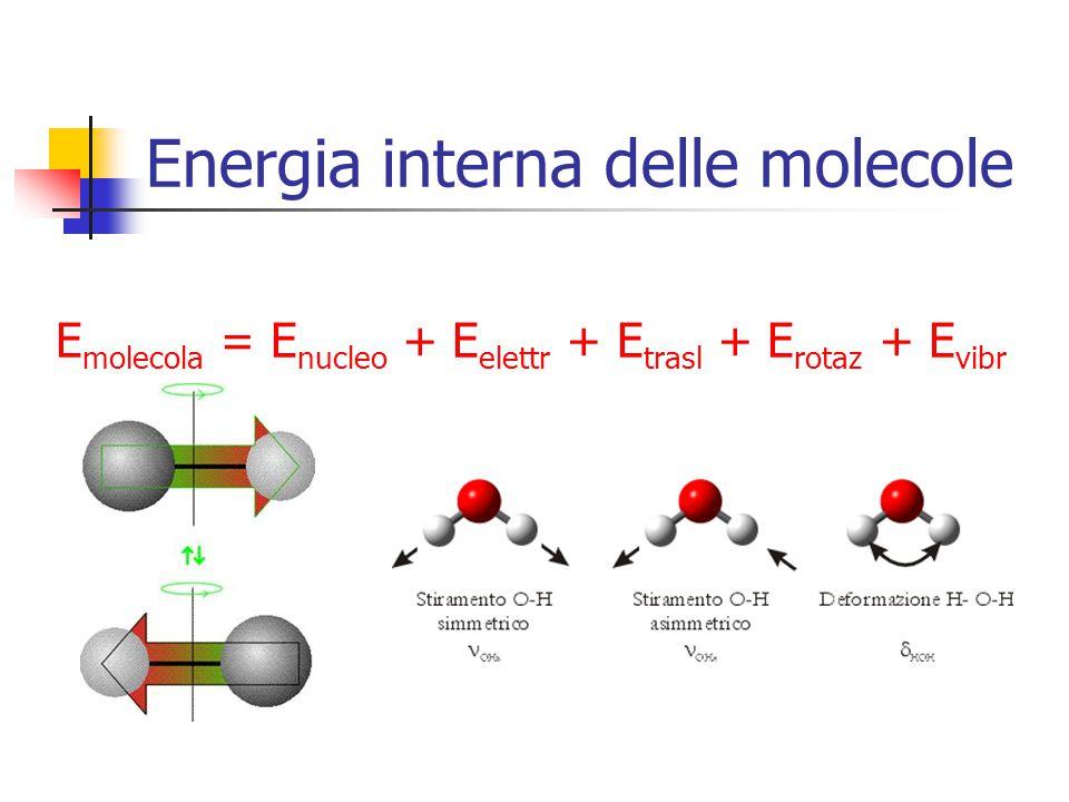 Energia interna delle molecole E molecola = E nucleo + E elettr + E trasl + E rotaz + E vibr