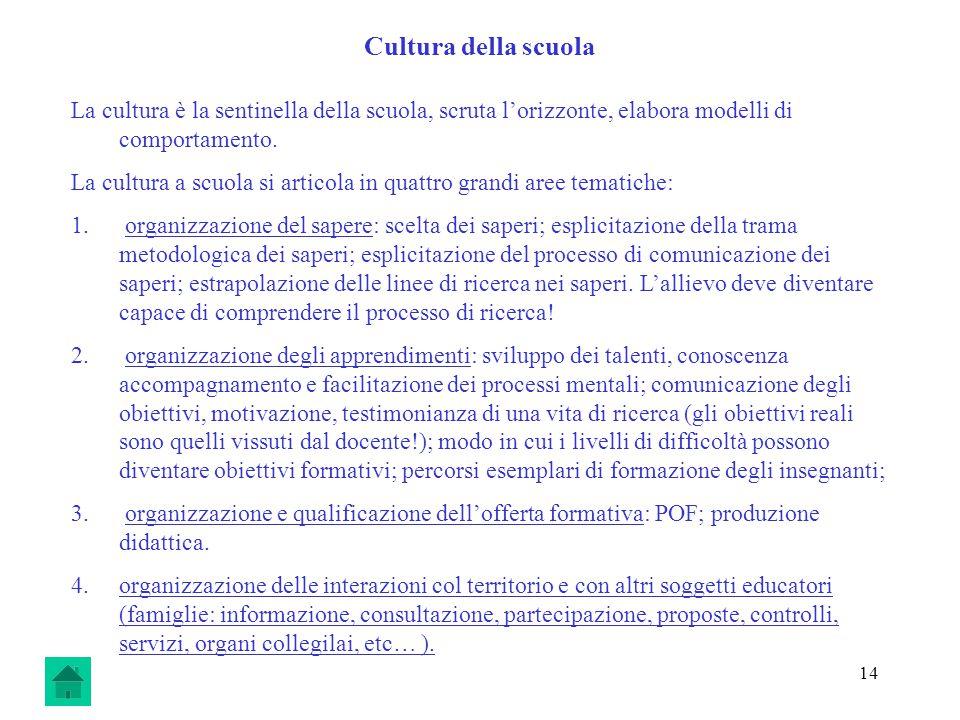 14 Cultura della scuola La cultura è la sentinella della scuola, scruta lorizzonte, elabora modelli di comportamento.