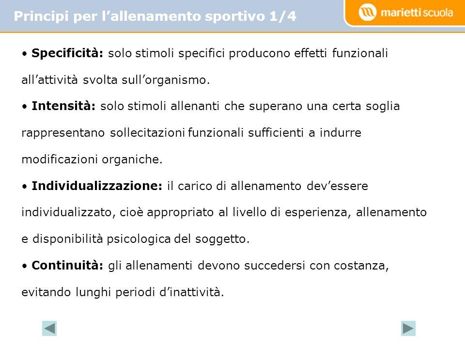 Principi per lallenamento sportivo 1/4 Specificità: solo stimoli specifici producono effetti funzionali allattività svolta sullorganismo.
