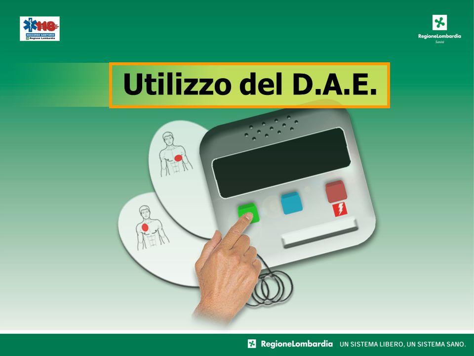 Utilizzo del D.A.E.