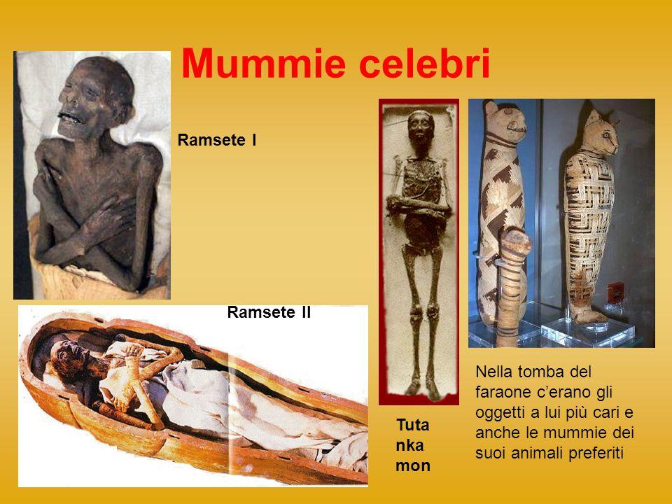 Mummie celebri Nella tomba del faraone cerano gli oggetti a lui più cari e anche le mummie dei suoi animali preferiti Ramsete I Ramsete II Tuta nka mo