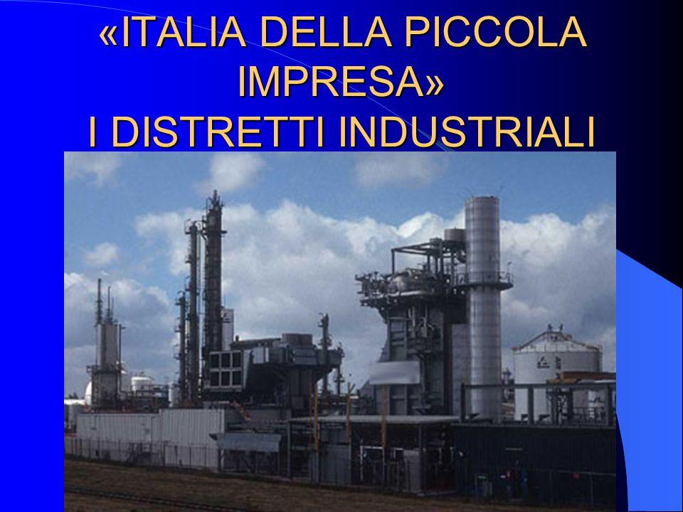«ITALIA DELLA PICCOLA IMPRESA» I DISTRETTI INDUSTRIALI
