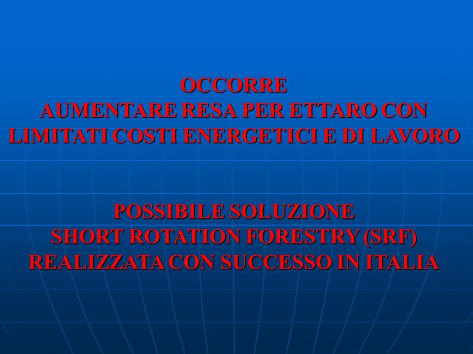 POSSIBILE SOLUZIONE SHORT ROTATION FORESTRY (SRF) REALIZZATA CON SUCCESSO IN ITALIA OCCORRE AUMENTARE RESA PER ETTARO CON LIMITATI COSTI ENERGETICI E