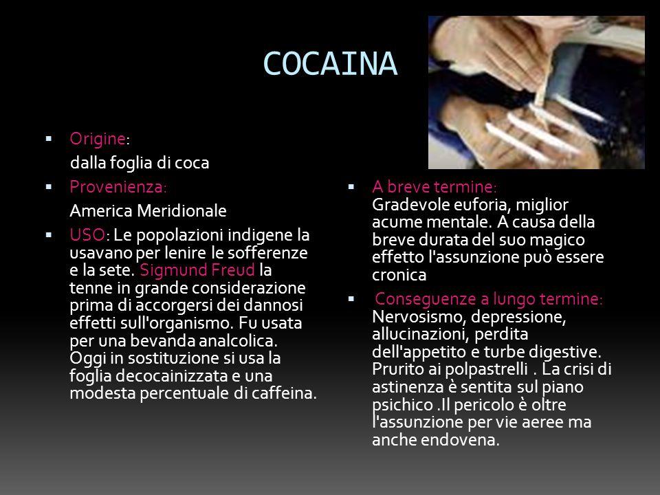 COCAINA Origine: dalla foglia di coca Provenienza: America Meridionale USO: Le popolazioni indigene la usavano per lenire le sofferenze e la sete. Sig