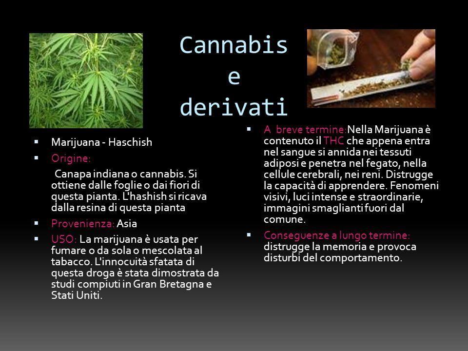 Cannabis e derivati Marijuana - Haschish Origine: Canapa indiana o cannabis. Si ottiene dalle foglie o dai fiori di questa pianta. L'hashish si ricava