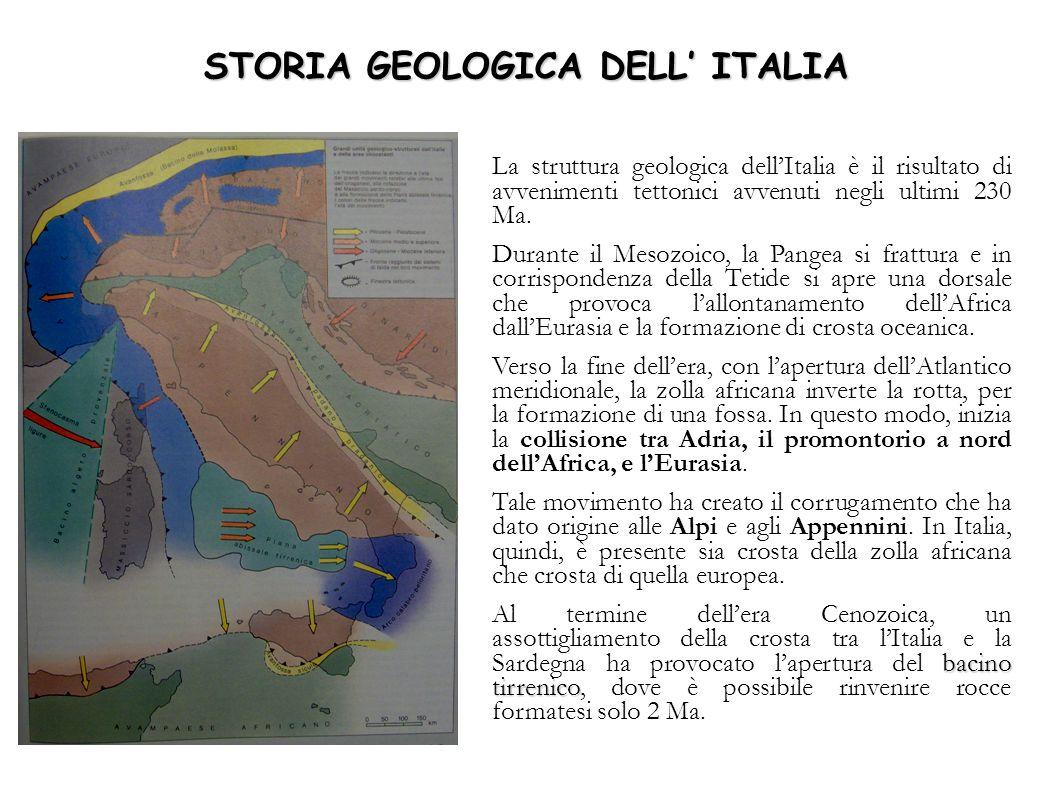 STORIA GEOLOGICA DELL ITALIA La struttura geologica dellItalia è il risultato di avvenimenti tettonici avvenuti negli ultimi 230 Ma. Durante il Mesozo