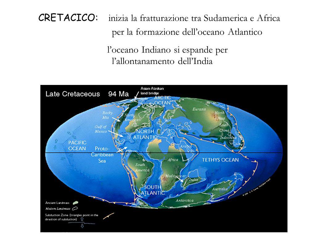 CRETACICO: inizia la fratturazione tra Sudamerica e Africa per la formazione delloceano Atlantico loceano Indiano si espande per lallontanamento dellI
