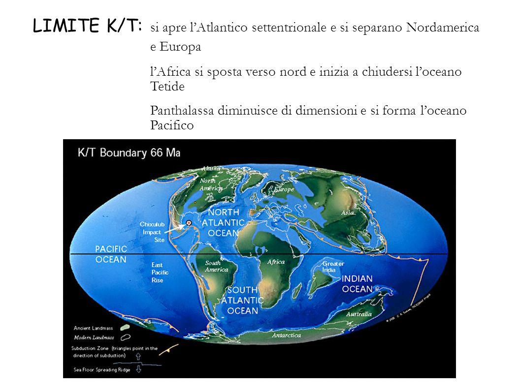 LIMITE K/T: si apre lAtlantico settentrionale e si separano Nordamerica e Europa lAfrica si sposta verso nord e inizia a chiudersi loceano Tetide Pant