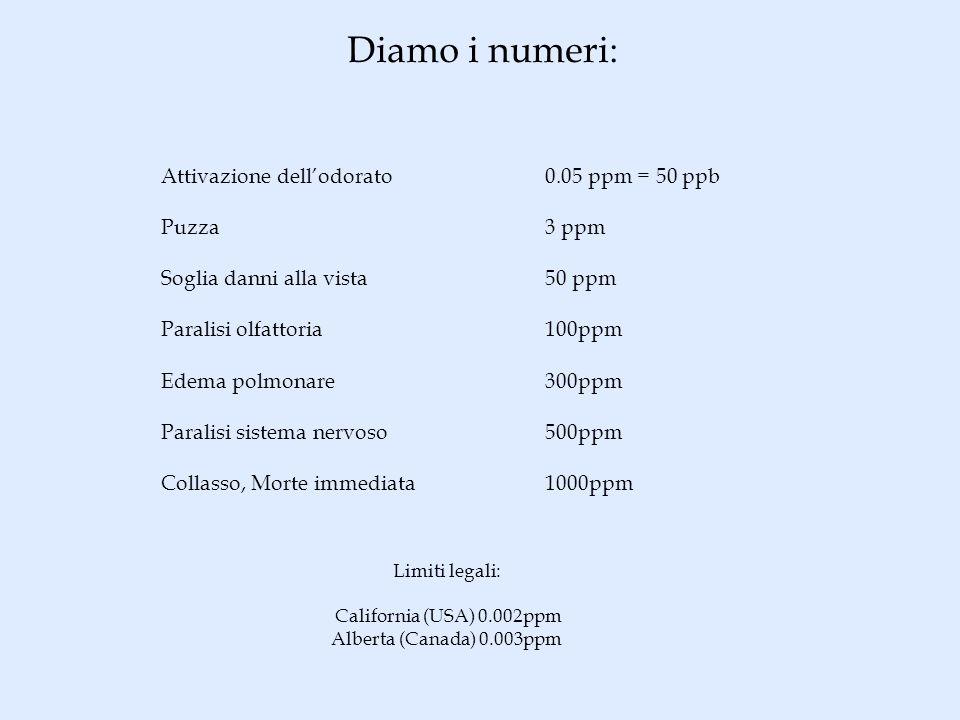 Diamo i numeri: Attivazione dellodorato 0.05 ppm = 50 ppb Puzza3 ppm Soglia danni alla vista50 ppm Paralisi olfattoria100ppm Edema polmonare300ppm Par