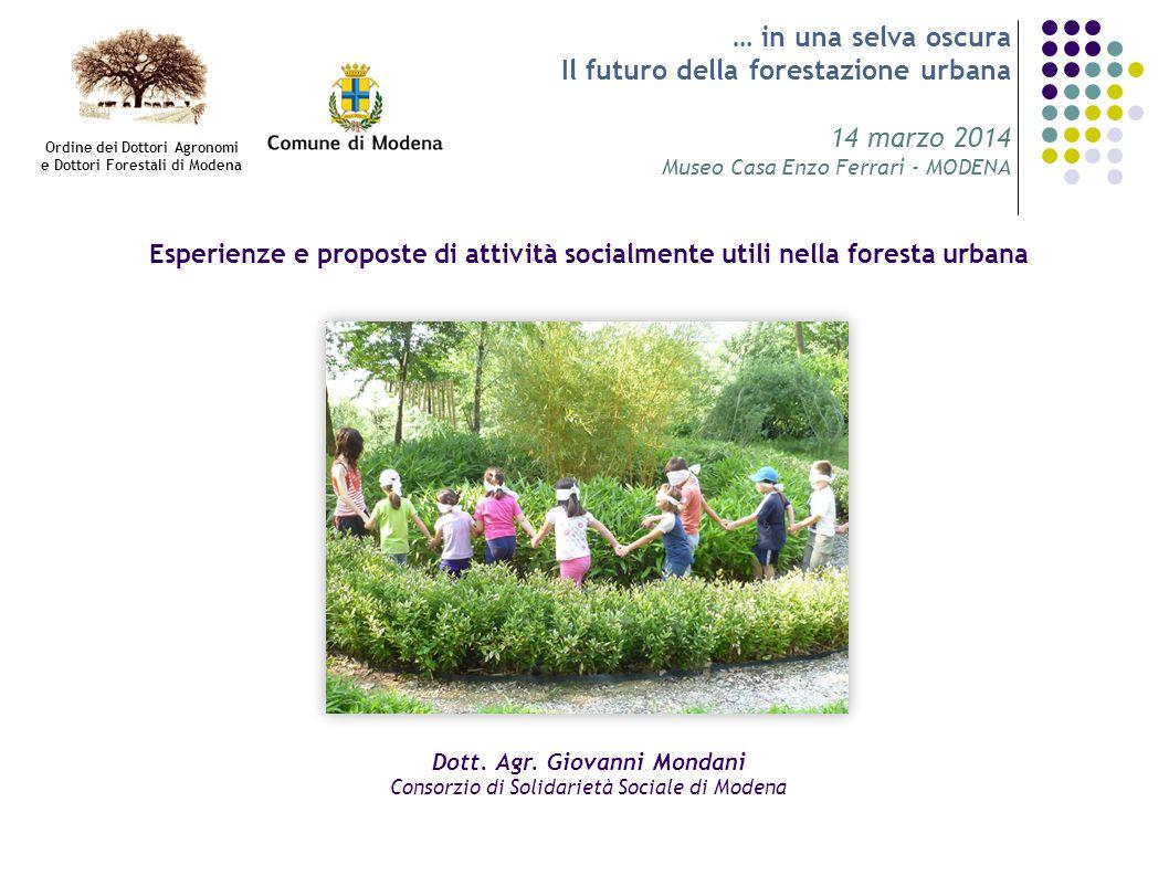 … in una selva oscura Il futuro della forestazione urbana 14 marzo 2014 Museo Casa Enzo Ferrari - MODENA Esperienze e proposte di attività socialmente