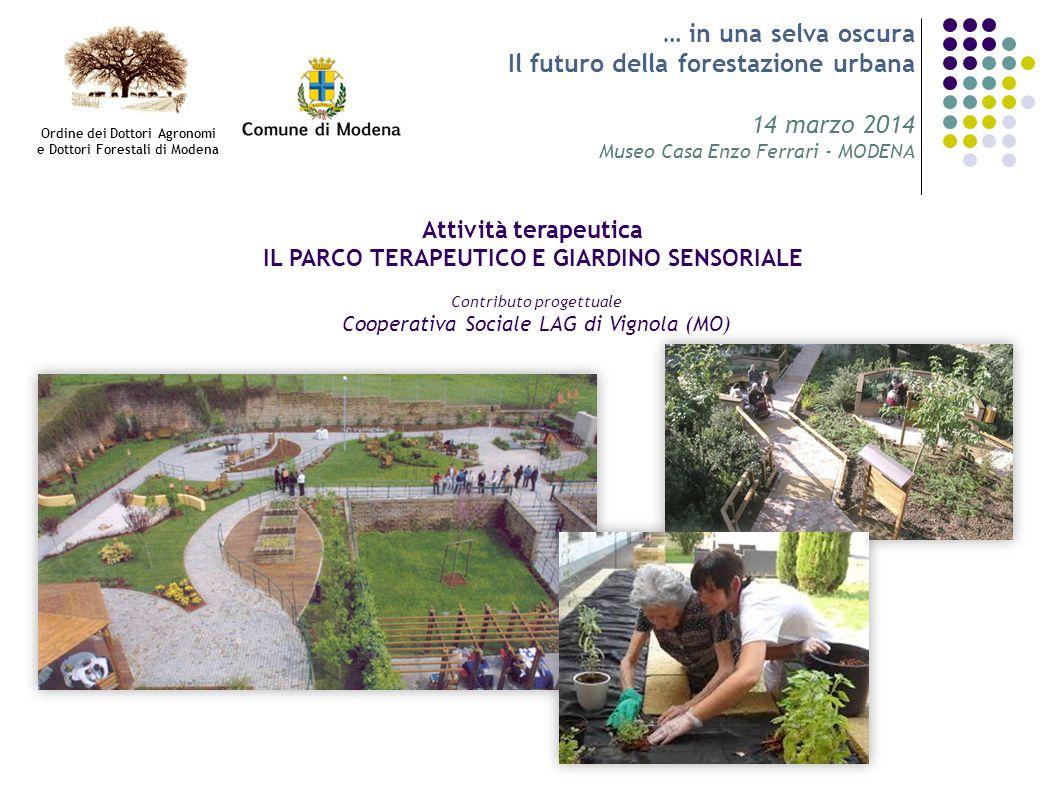 … in una selva oscura Il futuro della forestazione urbana 14 marzo 2014 Museo Casa Enzo Ferrari - MODENA Attività terapeutica IL PARCO TERAPEUTICO E G