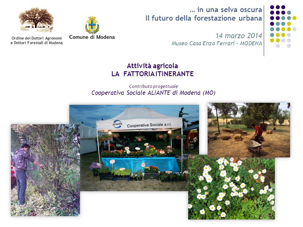 … in una selva oscura Il futuro della forestazione urbana 14 marzo 2014 Museo Casa Enzo Ferrari - MODENA Attività agricola LA FATTORIA ITINERANTE Cont