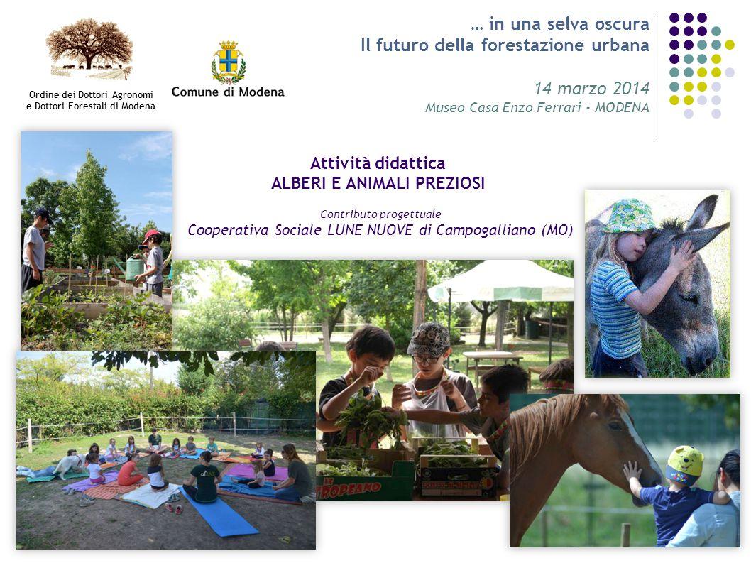 … in una selva oscura Il futuro della forestazione urbana 14 marzo 2014 Museo Casa Enzo Ferrari - MODENA Attività didattica ALBERI E ANIMALI PREZIOSI