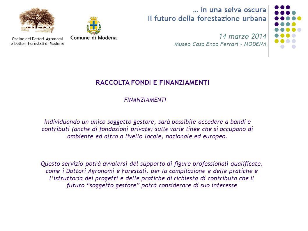 … in una selva oscura Il futuro della forestazione urbana 14 marzo 2014 Museo Casa Enzo Ferrari - MODENA RACCOLTA FONDI E FINANZIAMENTI FINANZIAMENTI