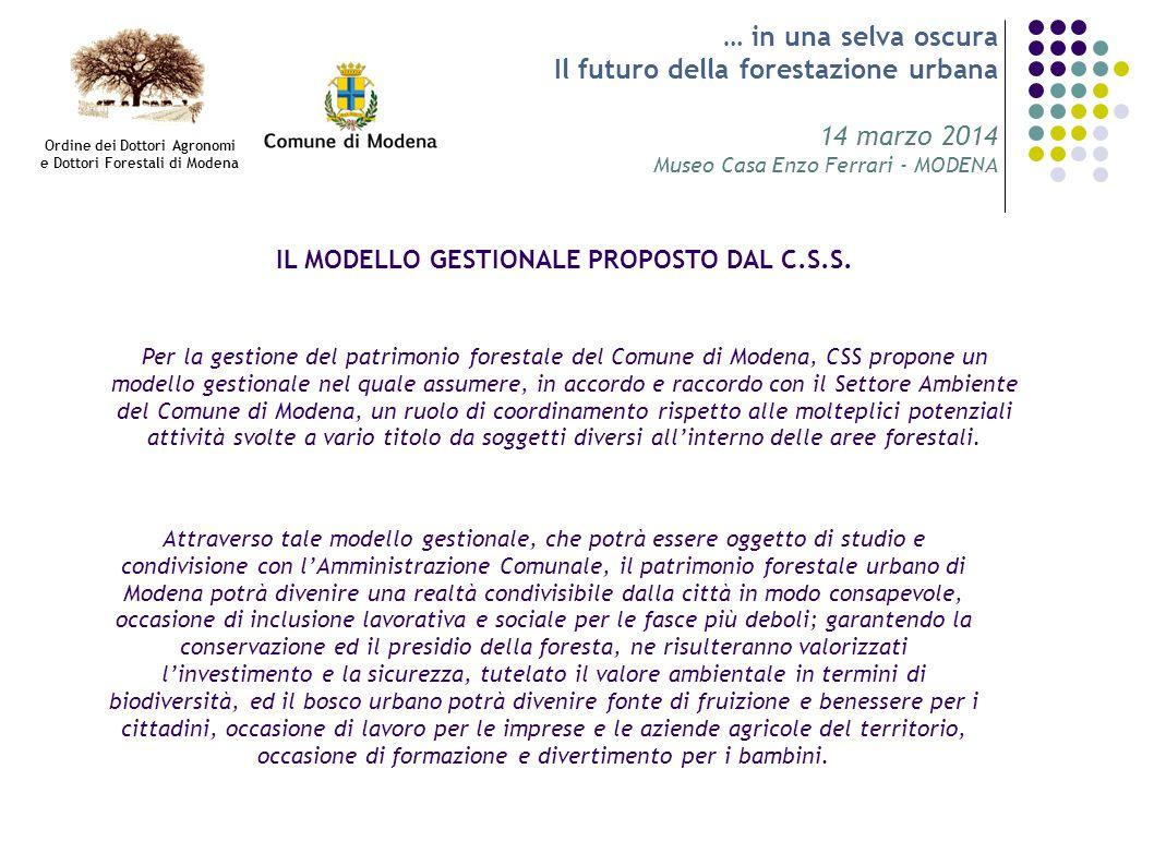 … in una selva oscura Il futuro della forestazione urbana 14 marzo 2014 Museo Casa Enzo Ferrari - MODENA IL MODELLO GESTIONALE PROPOSTO DAL C.S.S. Ord