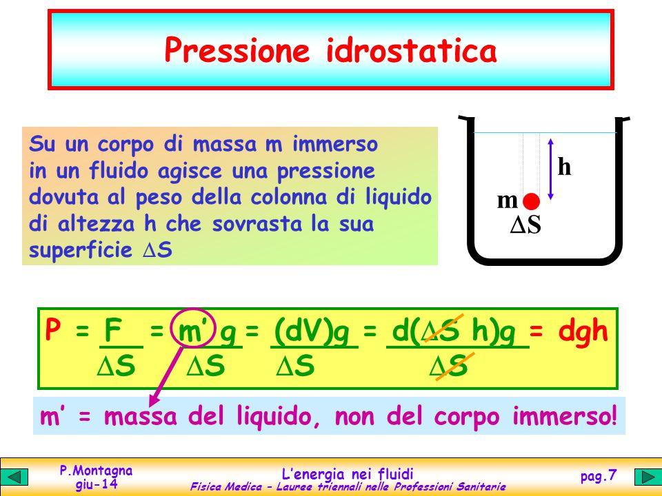 P.Montagna giu-14 Lenergia nei fluidi Fisica Medica – Lauree triennali nelle Professioni Sanitarie pag.7 m = massa del liquido, non del corpo immerso.