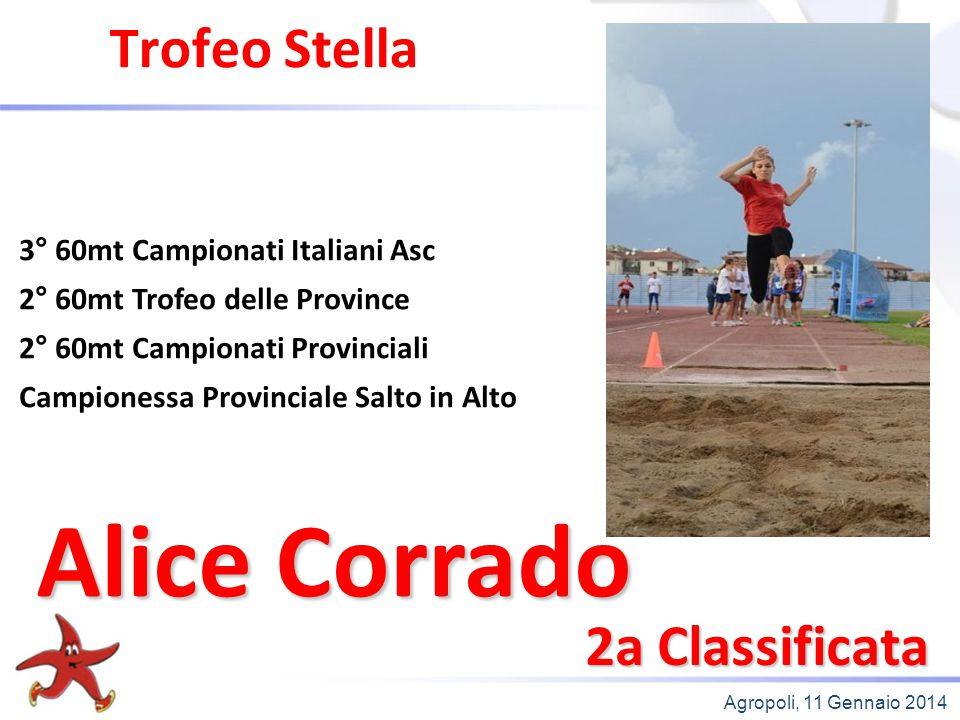 Agropoli, 11 Gennaio 2014 Trofeo Stella 2a Classificata 3° 60mt Campionati Italiani Asc 2° 60mt Trofeo delle Province 2° 60mt Campionati Provinciali C