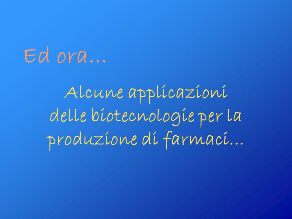 Ed ora… Alcune applicazioni delle biotecnologie per la produzione di farmaci…