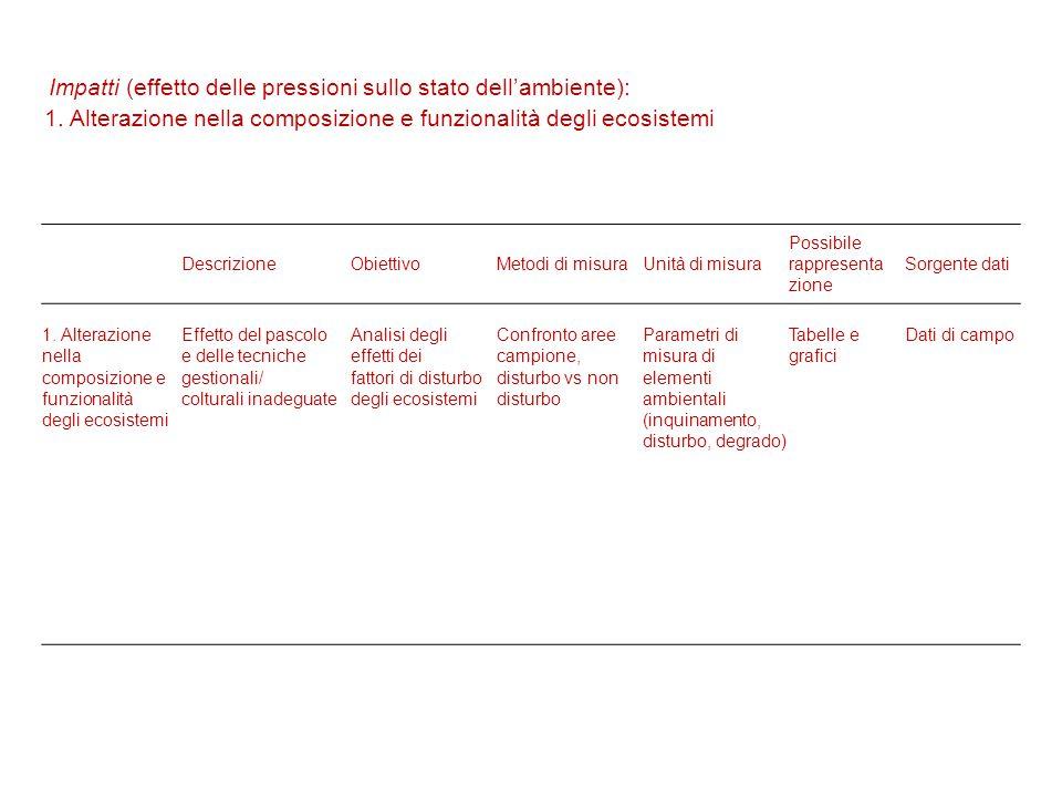 DescrizioneObiettivoMetodi di misuraUnità di misura Possibile rappresenta zione Sorgente dati 1.