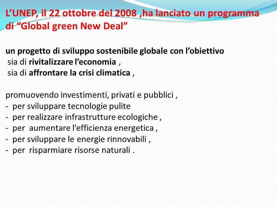 L'UNEP, il 22 ottobre del 2008,ha lanciato un programma di Global green New Deal un progetto di sviluppo sostenibile globale con l'obiettivo sia di rivitalizzare l'economia, sia di affrontare la crisi climatica, promuovendo investimenti, privati e pubblici, - per sviluppare tecnologie pulite - per realizzare infrastrutture ecologiche, - per aumentare l'efficienza energetica, - per sviluppare le energie rinnovabili, - per risparmiare risorse naturali.