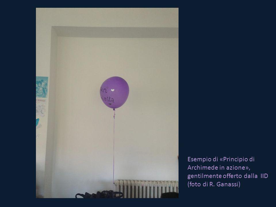 Esempio di «Principio di Archimede in azione», gentilmente offerto dalla IID (foto di R. Ganassi)
