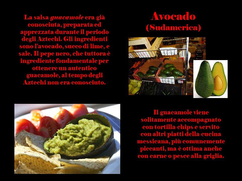 La salsa guacamole era già conosciuta, preparata ed apprezzata durante il periodo degli Aztechi. Gli ingredienti sono l'avocado, succo di lime, e sale