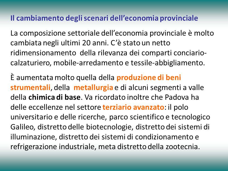 Il cambiamento degli scenari dell'economia provinciale La composizione settoriale dell'economia provinciale è molto cambiata negli ultimi 20 anni.