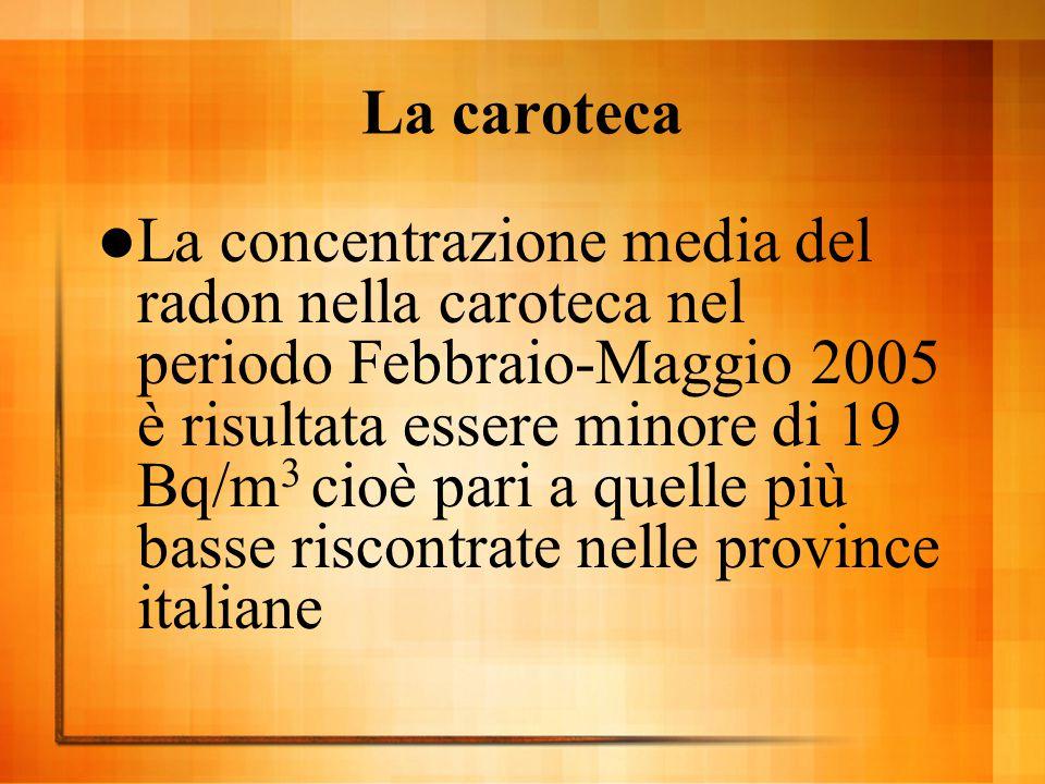 La caroteca  La concentrazione media del radon nella caroteca nel periodo Febbraio-Maggio 2005 è risultata essere minore di 19 Bq/m 3 cioè pari a que