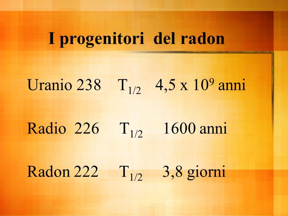 I figli del radon Polonio 218 T 1/2 3,11 minuti Piombo 214 T 1/2 26,8 minuti Bismuto 214 T 1/2 19,8 minuti Polonio 214 T 1/2 1,6x10 -4 sec Piombo 210 T 1/2 22,3 anni Bismuto 210 T 1/2 5,01 giorni Piombo 210 T 1/2 138 giorni Piombo 210 stabile