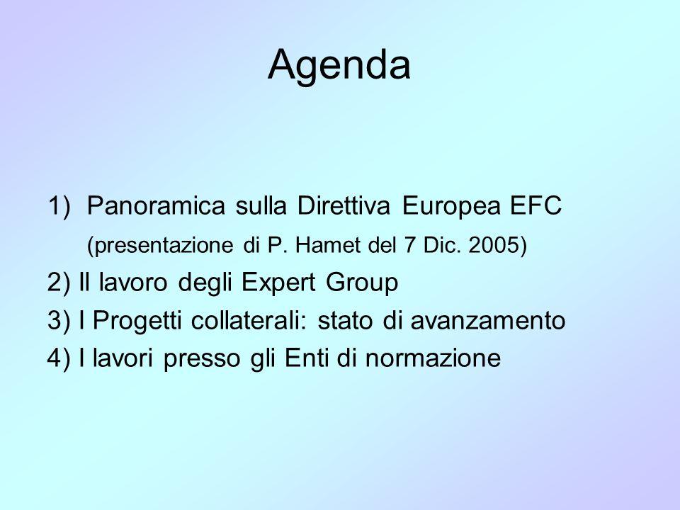 Lo stato dell'arte degli EG GruppoLeaderArgomentoStatoDiscusso EG0 C.E.Expert Groupn.a.