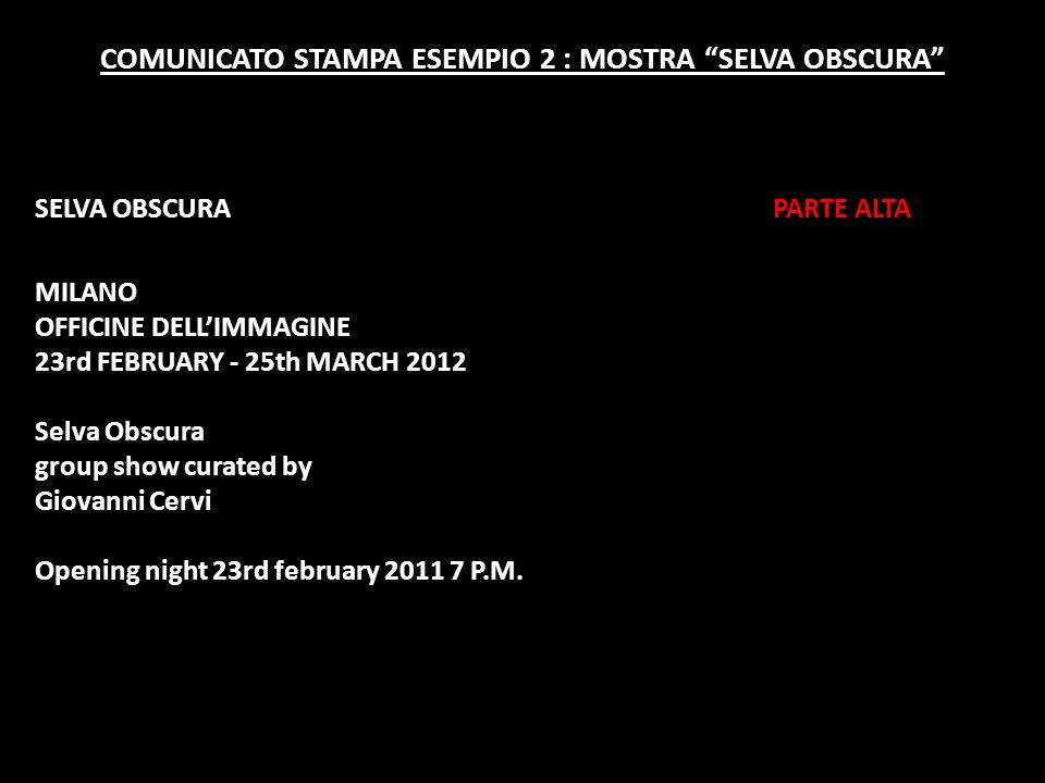 """COMUNICATO STAMPA ESEMPIO 2 : MOSTRA """"SELVA OBSCURA"""" SELVA OBSCURA PARTE ALTA MILANO OFFICINE DELL'IMMAGINE 23rd FEBRUARY - 25th MARCH 2012 Selva Obsc"""