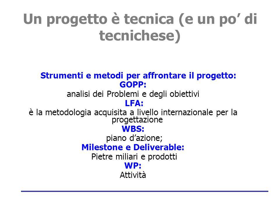 10 Introduzione: Il Project Management  Strumento di programmazione utile a migliorare il management delle azioni comunitarie.