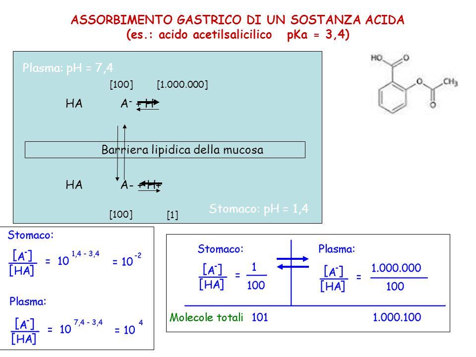 ASSORBIMENTO GASTRICO DI UN SOSTANZA ACIDA (es.: acido acetilsalicilico pKa = 3,4) HA A - + H + Barriera lipidica della mucosa [100] [1.000.000] [100] [1] Plasma: pH = 7,4 Stomaco: pH = 1,4