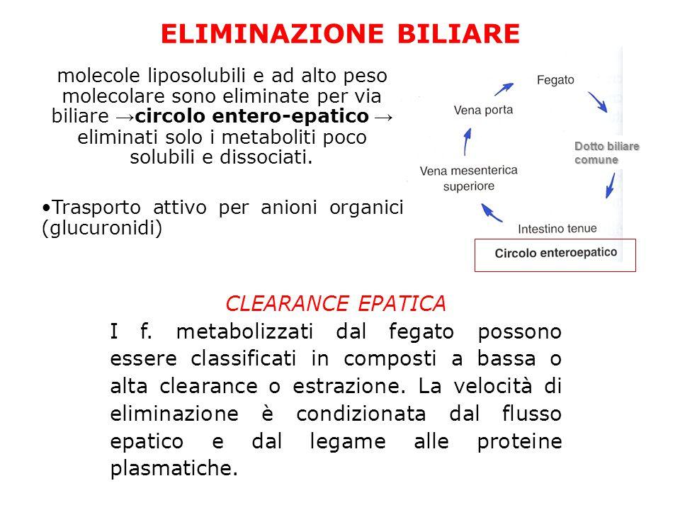 Dotto biliare comune molecole liposolubili e ad alto peso molecolare sono eliminate per via biliare → circolo entero-epatico → eliminati solo i metaboliti poco solubili e dissociati.