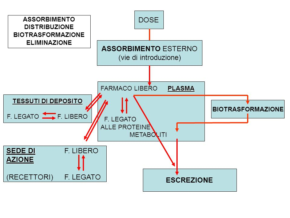 DOSE ASSORBIMENTO ESTERNO (vie di introduzione) PLASMA FARMACO LIBERO PLASMA F.