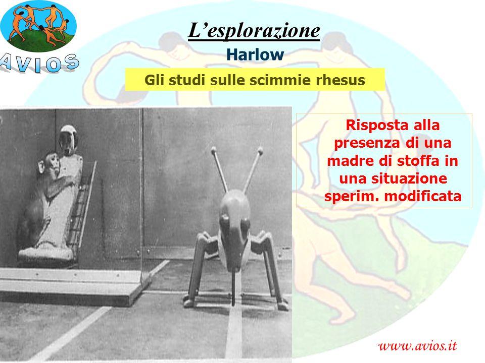 www.avios.itL'esplorazione Harlow Gli studi sulle scimmie rhesus Risposta alla presenza di una madre di stoffa in una situazione sperim. modificata