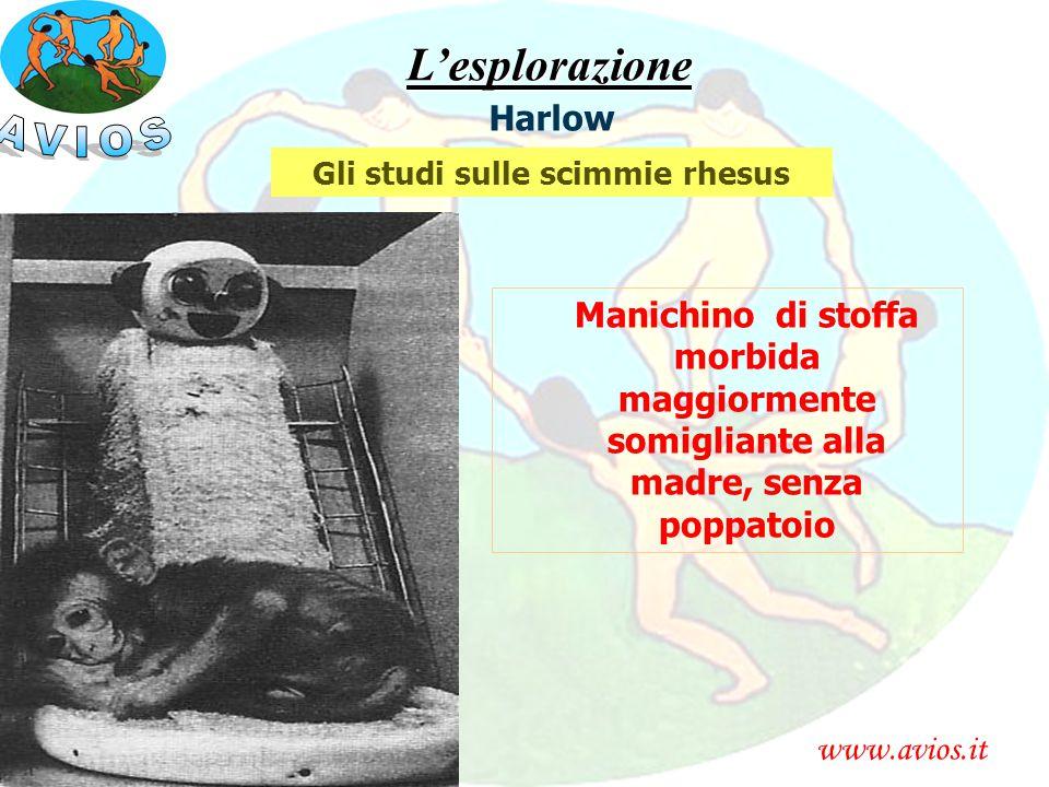 www.avios.itL'esplorazione Harlow Gli studi sulle scimmie rhesus Manichino di stoffa morbida maggiormente somigliante alla madre, senza poppatoio