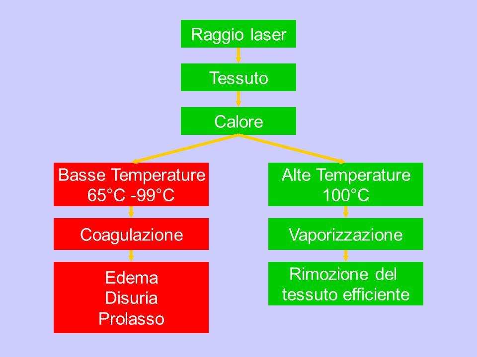 Raggio laser Tessuto Calore Basse Temperature 65°C -99°C Alte Temperature 100°C Coagulazione Edema Disuria Prolasso Vaporizzazione Rimozione del tessu
