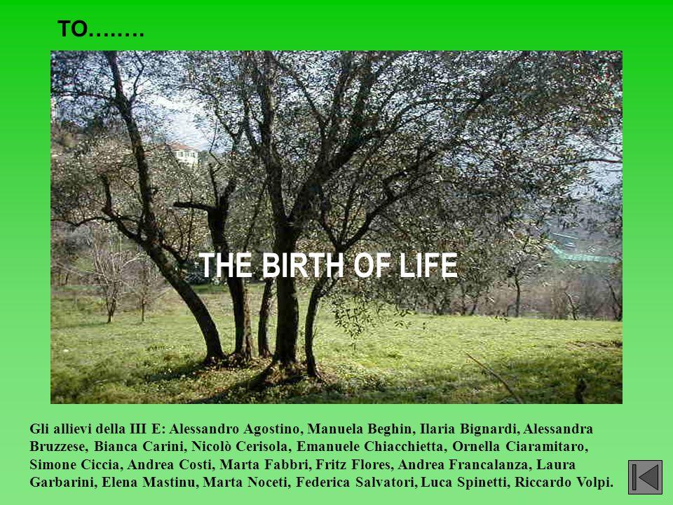 THE BIRTH OF LIFE TO….…. Gli allievi della III E: Alessandro Agostino, Manuela Beghin, Ilaria Bignardi, Alessandra Bruzzese, Bianca Carini, Nicolò Cer
