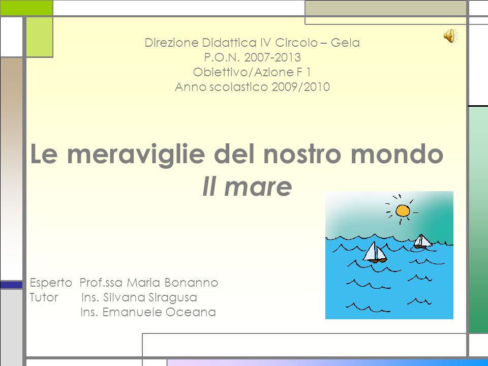 Direzione Didattica IV Circolo – Gela P.O.N. 2007-2013 Obiettivo/Azione F 1 Anno scolastico 2009/2010 Le meraviglie del nostro mondo Il mare Esperto P
