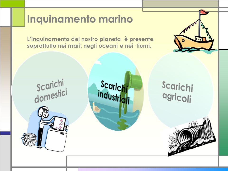 Inquinamento marino L'inquinamento del nostro pianeta è presente soprattutto nei mari, negli oceani e nei fiumi.