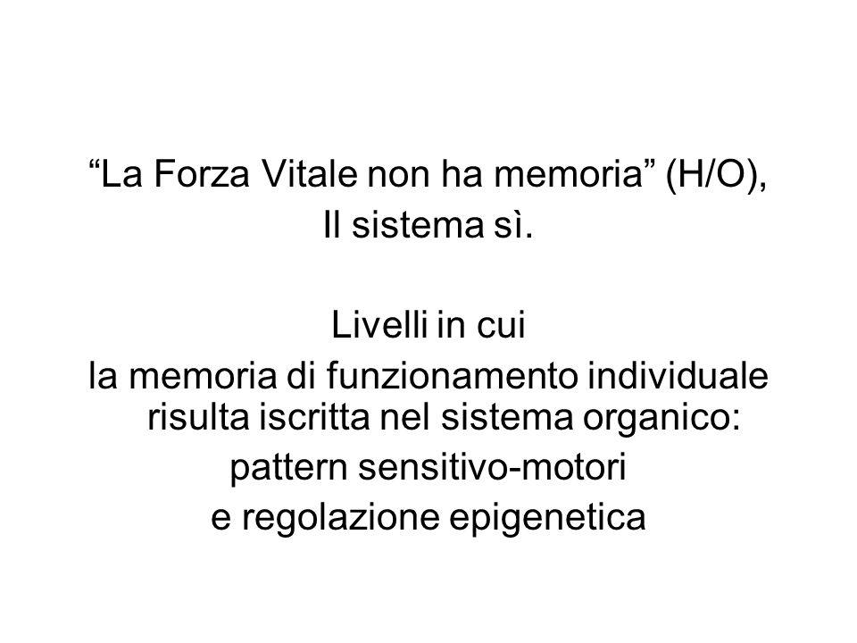 """""""La Forza Vitale non ha memoria"""" (H/O), Il sistema sì. Livelli in cui la memoria di funzionamento individuale risulta iscritta nel sistema organico: p"""