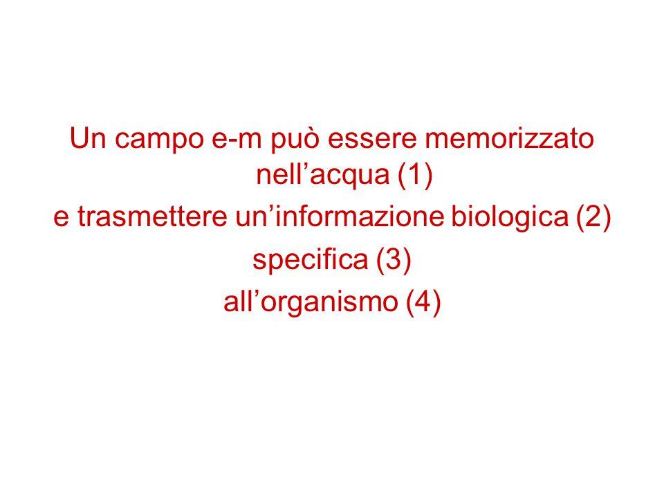 Un campo e-m può essere memorizzato nell'acqua (1) e trasmettere un'informazione biologica (2) specifica (3) all'organismo (4)